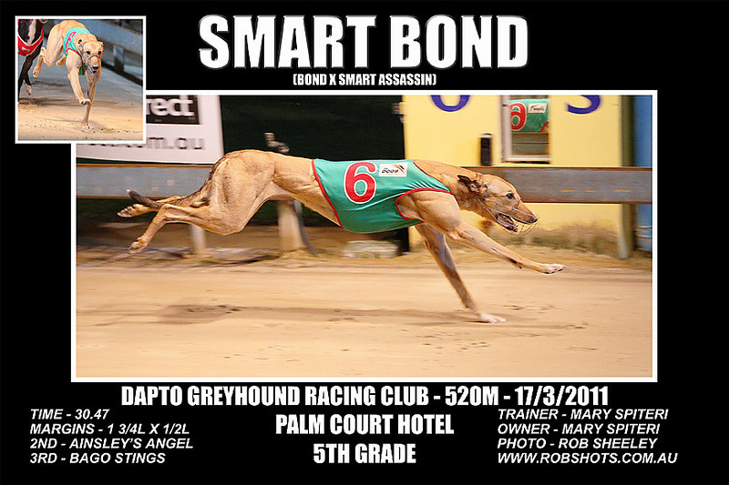 Dapto_170311_Race05_Smart_Bond