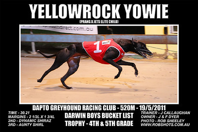 Dapto_190511_Race06_Yellowrock_Yowie