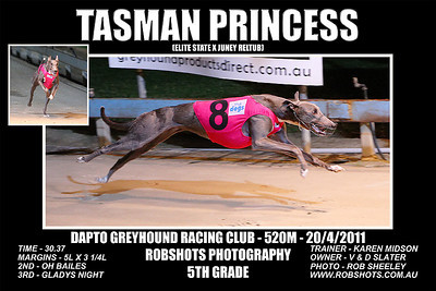 Dapto_200411_Race05_Tasman_Princess