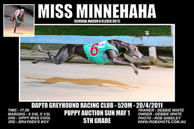 Dapto_200411_Race09_Miss_Minnehaha
