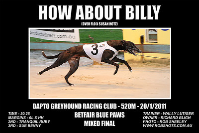 Dapto_200111_Race02_How_About_Billy
