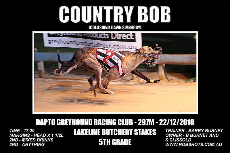 Dapto_221210_Race09_Country_Bob