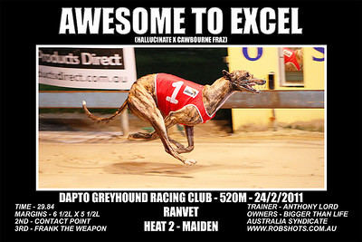 Dapto_240211_Race09_Awesome_To_Excel