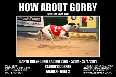 Dapto_270111_Race03_How_About_Gorby
