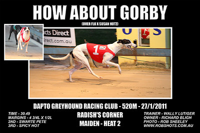 Dapto_270111_Race03_How_About_Gorby_02