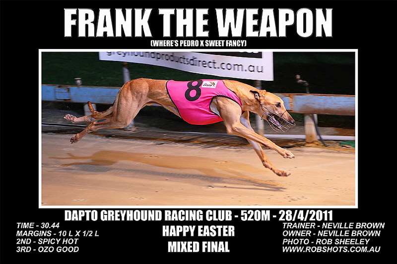 Dapto_280411_Race02_Frank_The_Weapon