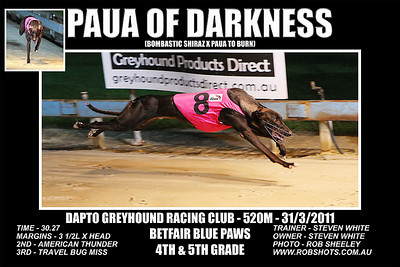 Dapto_310311_Race06_Paua_Of_Darkness