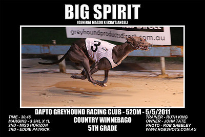 Dapto_050511_Race05_Big_Spirit