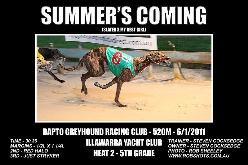 Dapto_060111_Race03_Summers_Coming