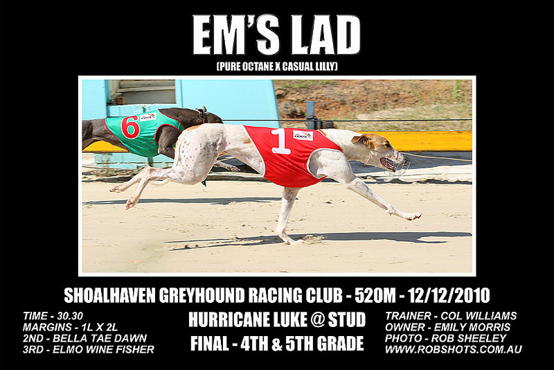 Nowra_121210_Race06_Ems_Lad