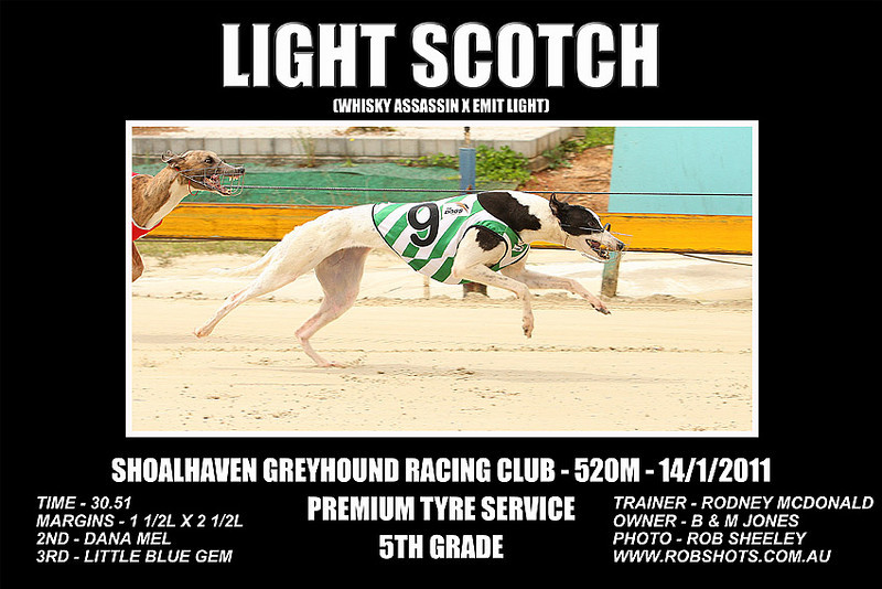 Nowra_140111_Race07_Light_Scotch