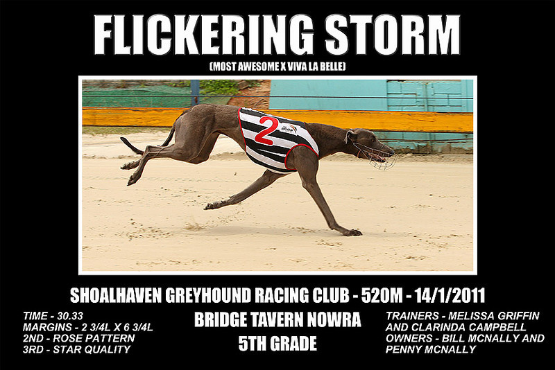 Nowra_140111_Race05_Flickering_Storm