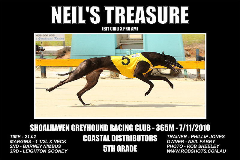 Nowra_141110_Race02_Neils_Treasure