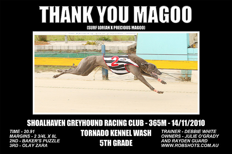 Nowra_141110_Race10_Thank_You_Magoo