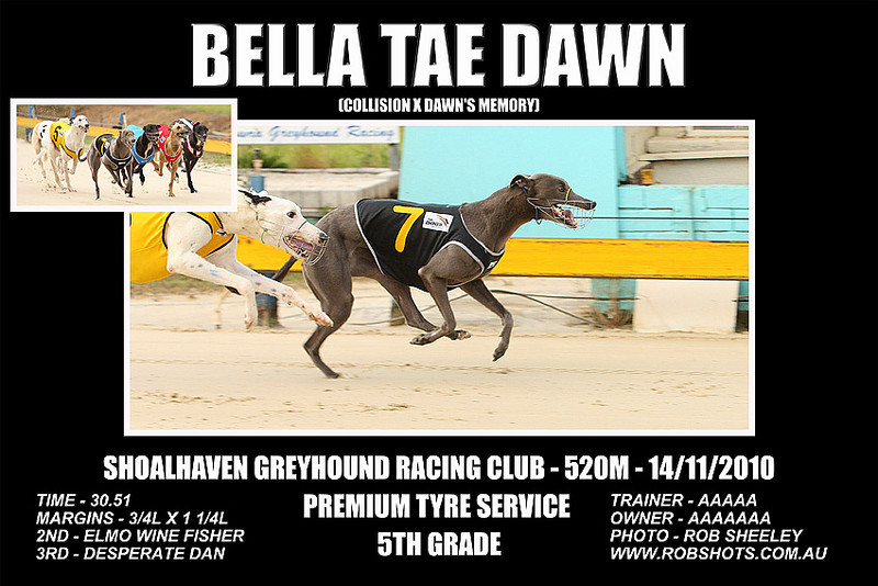 Nowra_141110_Race08_Bella_Tae_Dawn