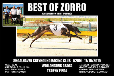 Nowra_171010_Race06_Best_Of_Zorro