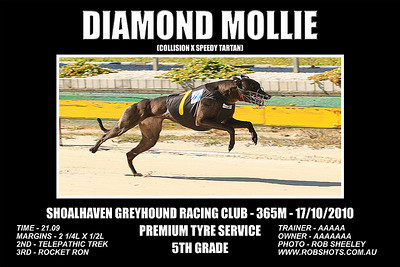 Nowra_171010_Race08_Diamond_Mollie