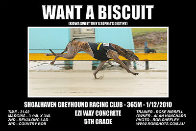 Nowra_011210_Race09_Want_A_Biscuit