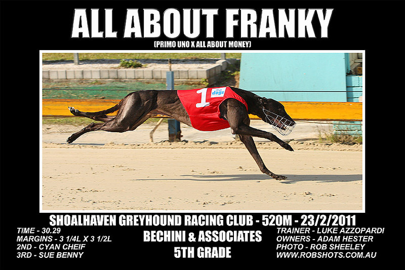 Nowra_230211_Race05_All_About_Franky