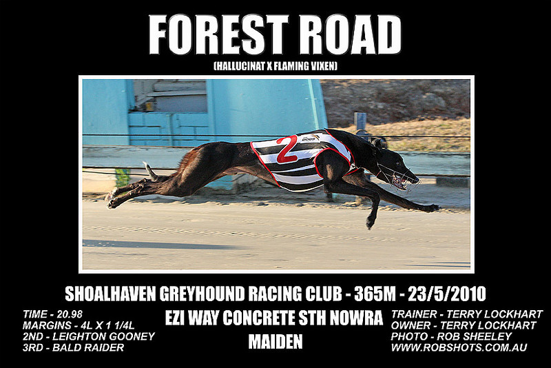 Nowra_230510_Race01_Forest_Road