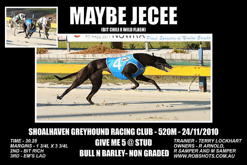 Nowra_241110_Race07_Maybe_Jecee