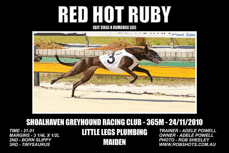 Nowra_241110_Race01_Red_Hot_Ruby