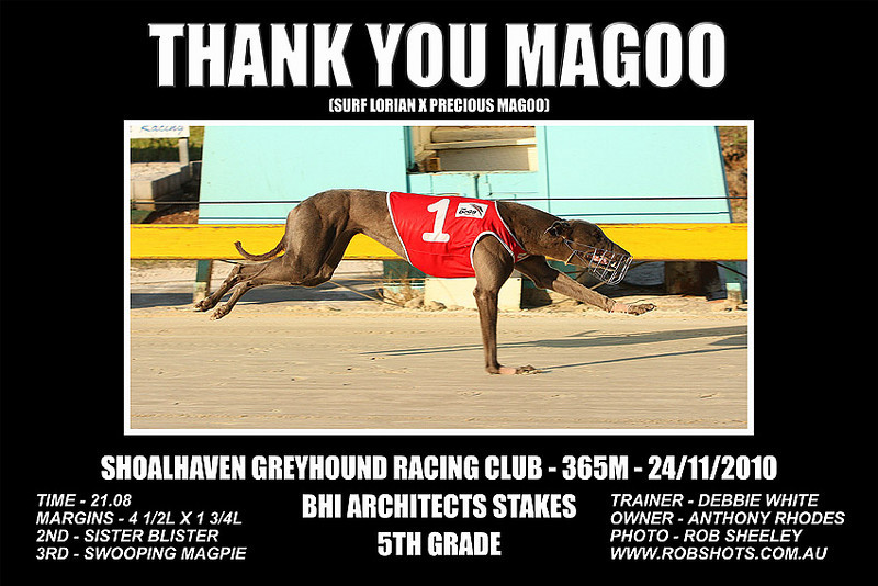 Nowra_241110_Race09_Thank_You_Magoo