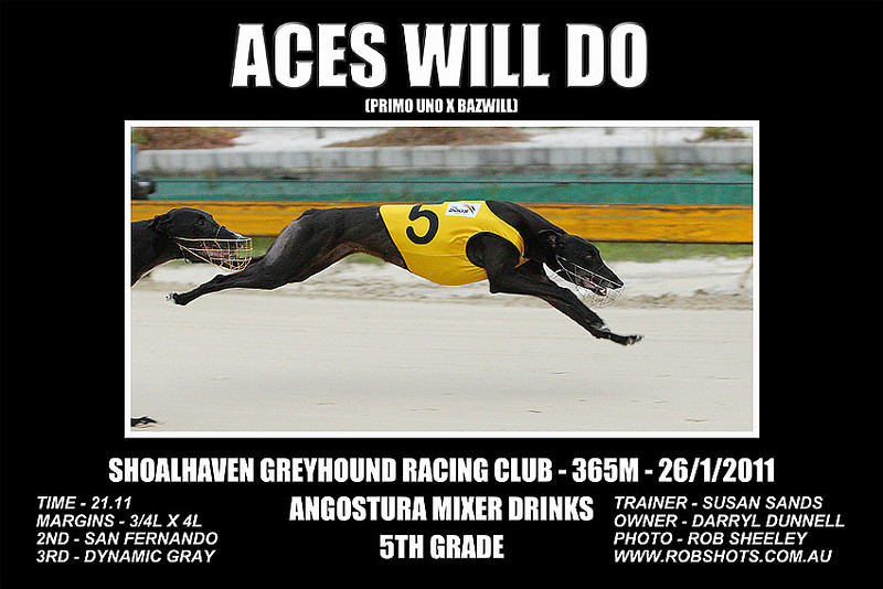 Nowra_260111_Race10_Aces_Will_Do