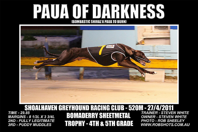 Nowra_270411_Race06_Paua_Of_Darkness