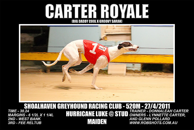 Nowra_270411_Race09_Carter_Royale