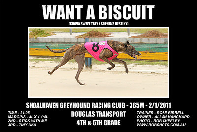 Nowra_020112_Race08_Want_A_Biscuit