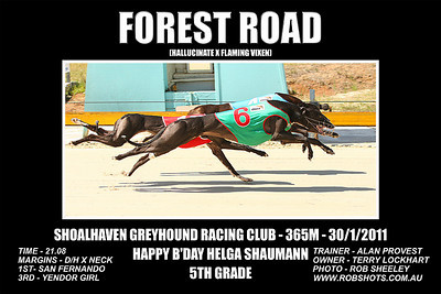 Nowra_300111_Race03_Forest_Road