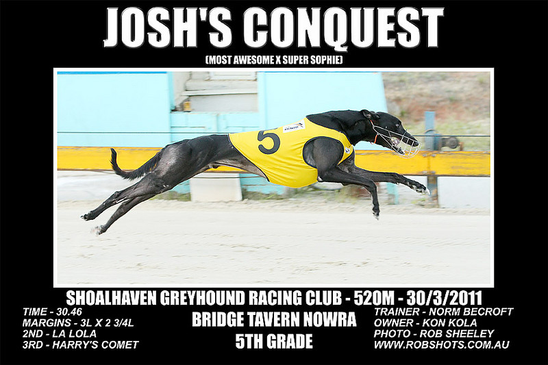 Nowra_280311_Race08_Joshs_Conquest