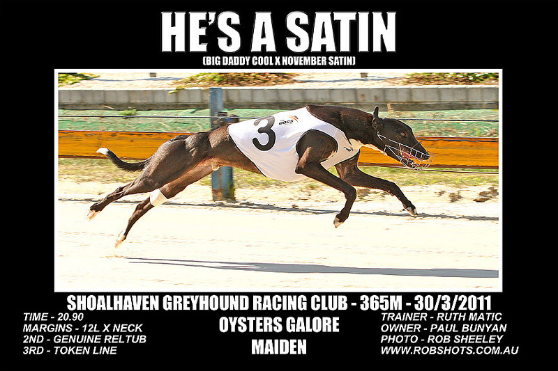 Nowra_280311_Race01_Hes_A_Satin