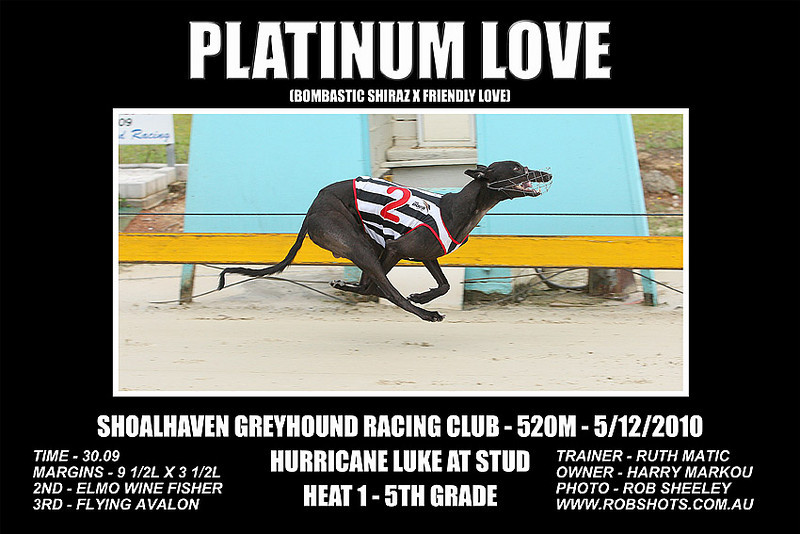 Nowra_051210_Race02_Platinum_Love