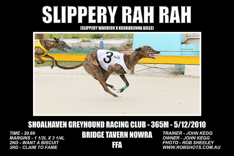 Nowra_051210_Race05_Slippery_Rah_Rah