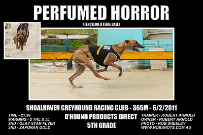 Nowra_060211_Race03_Perfumed_Horror
