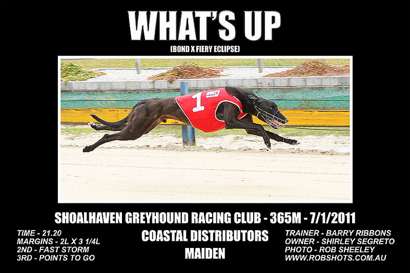 Nowra_070111_Race01_Whats_Up