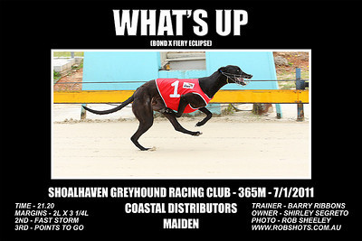 Nowra_070111_Race01_Whats_Up_02