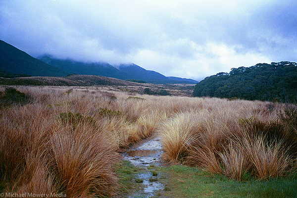 Heaphy Track in New Zealand