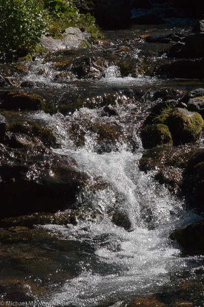 Head waters of Bear Creek.