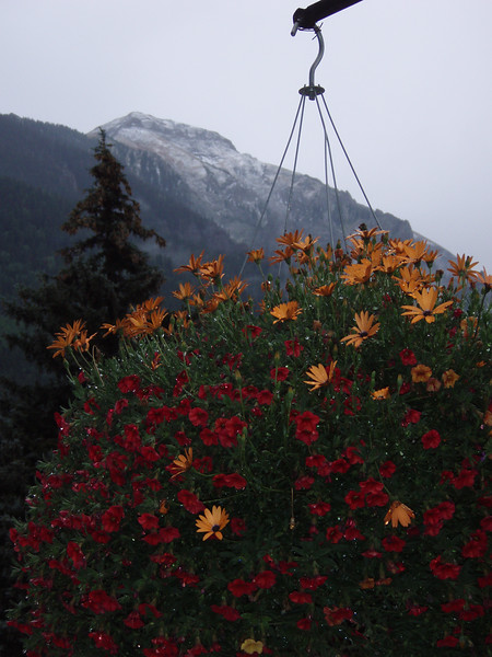 Flower baskets along main street with fresh snow on the peaks.