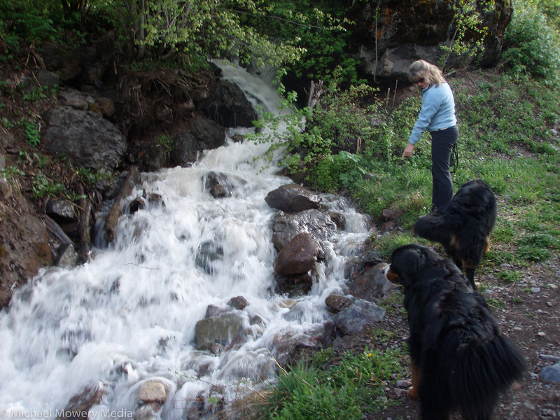 Seasonal creak at the bottom of Telluride Trail