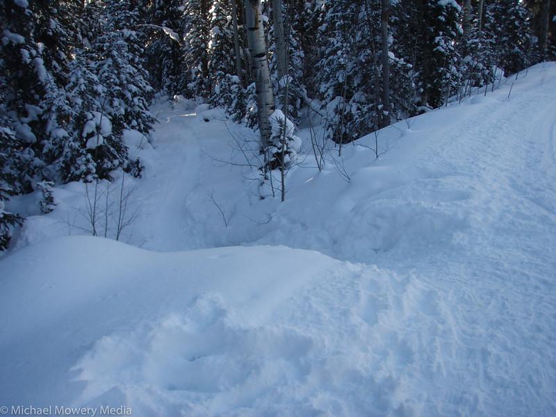 "Ski ""Run"" Heading Home"