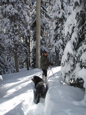 Snowshoe at the Homestead