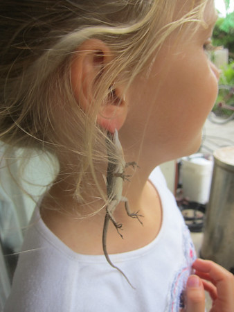 New style of earings