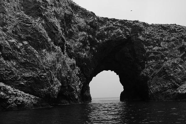 Day 7 Ballestas Islands Nazca Lines