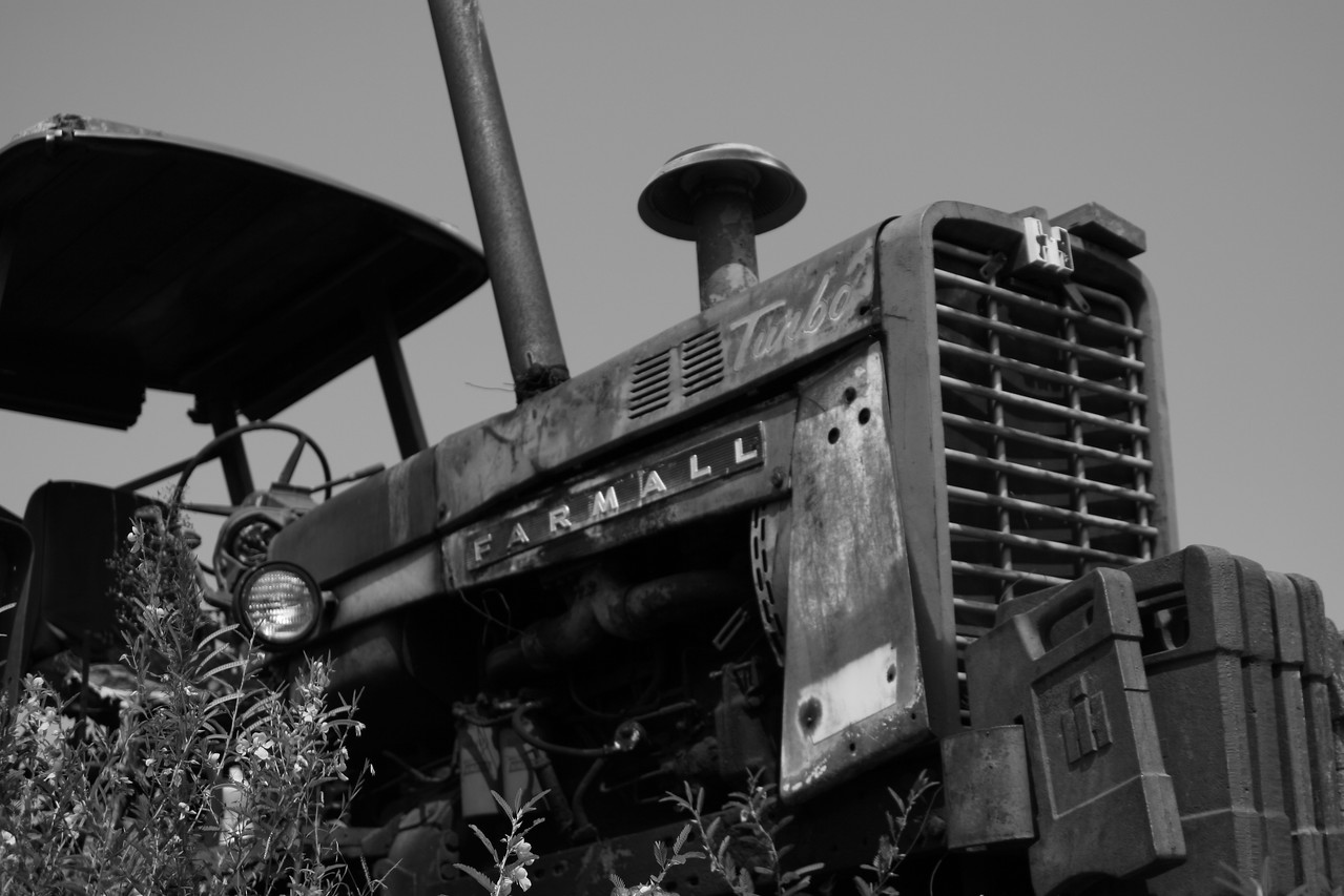 Farmall Some photos just scream for Black and White! These Mississippi Delta photos are no exception. Southern transportation comes in all forms. From tractors to mules, from trains to boats!