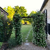 Entrance with jasmine vines
