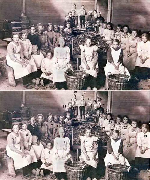 F0372 <br /> Een opname van bollenpelsters bij de fa. C.J.Speelman & Zonen N.V. omstreeks 1910. Bovenaan twee jongens met een bord, waarop staat: 'de bollenpelsters van C.J.Speelman'.<br /> <br /> 1 Koosje Hoogervorst<br /> 2<br /> 3 Neeltje Heins<br /> 4<br /> 5<br /> 6<br /> 7<br /> 8<br /> 9<br /> 10<br /> 11<br /> 12<br /> 13<br /> 14<br /> 15<br /> 16<br /> 17<br /> 18<br /> 19<br /> 20<br /> 21<br /> 22<br /> 23<br /> 24<br /> 25<br /> 25<br /> 27 Antje Keijzer<br /> 28 Neeltje Keijzer<br /> 29
